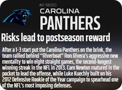 GAMEDAY RESOURCES - Carolina Panthers - 2013 2014 NFL Playoffs 2013 2014 Divisional Round