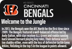 GAMEDAY RESOURCES - Cincinnati Bengals - 2013 2014 NFL Playoffs 2013 2014 Wildcard Weekend