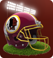 NFC East - Washington Redskins 2013 - The Boys Are Back blog - button